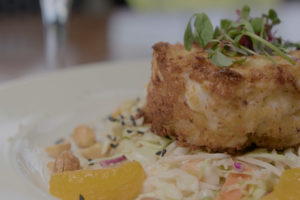 sea-watch-crab-cake