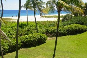 The Sea Watch Lawn is a perfect setting for small beachfront weddings or a stroll ... we have everything you need.